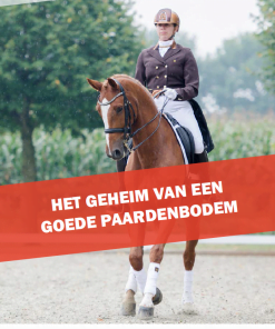 Cover ebook het geheim van een goede paardenbodem