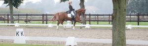 Kosten aanleggen paardenbak