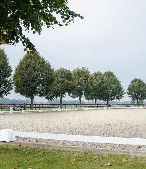 Overzicht wedstrijdbaan Ruitersportcentrum West Brabant