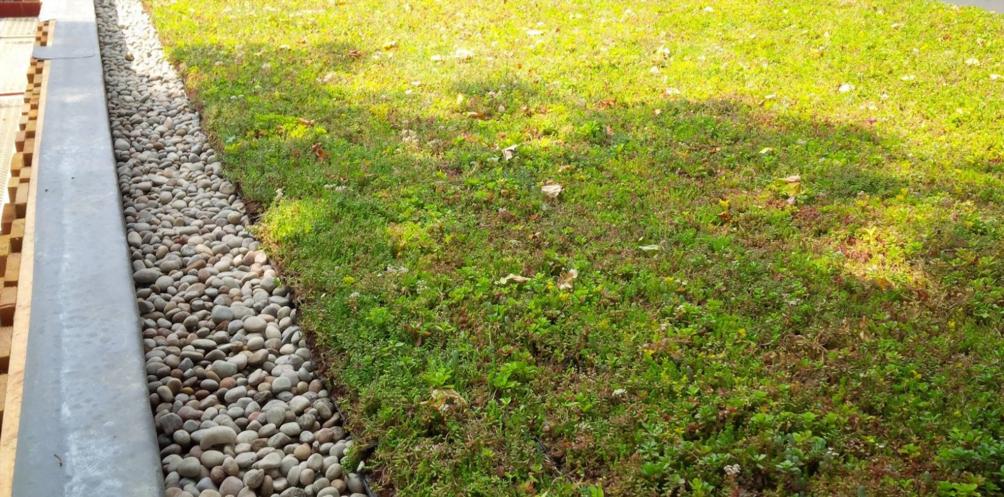 groen dak met grind afwerking