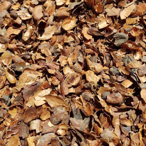 cacaodoppen tuin